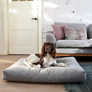 The Duo dog cushion blends in harmoniously with the living room